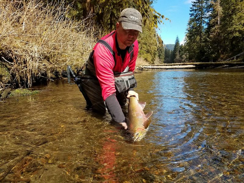 Ketchikan Steelhead Fishing
